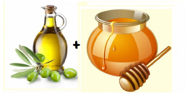 olive and honey a home remedies for hair fall and regrowth