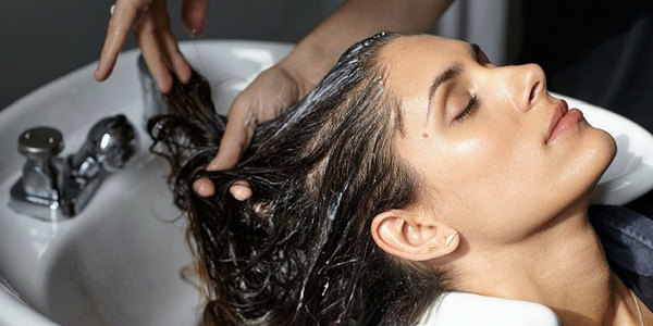 shampoo to stop hair fall and regrow hair naturally