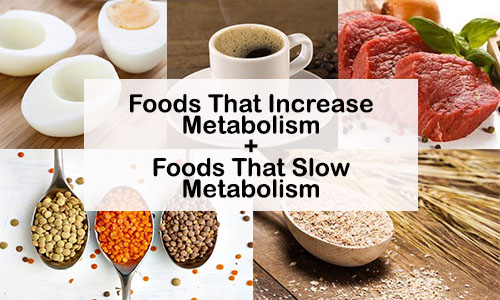 Best Foods That Increase Metabolism+ Foods That Slow Metabolism